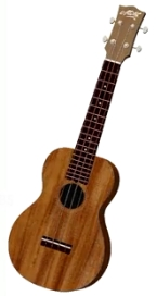 3D Model of Maton's new Ukulele