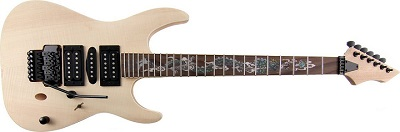 Alston Guitars A835D