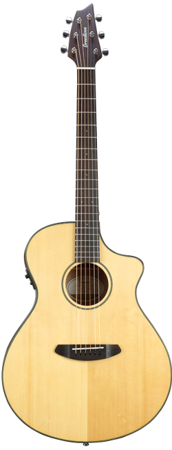 Breedlove Discovery Series