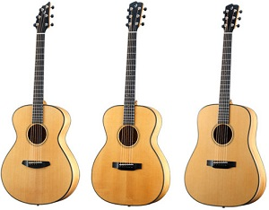 Breedlove Oregon Series
