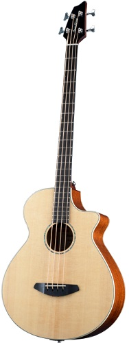 Breedlove Studio Bass