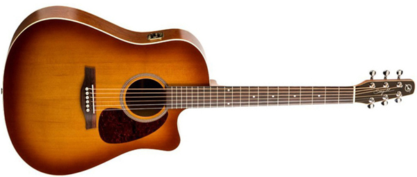 Ovation celebrity standard review report
