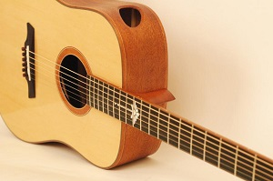 Maestro Double Top Series Acoustics