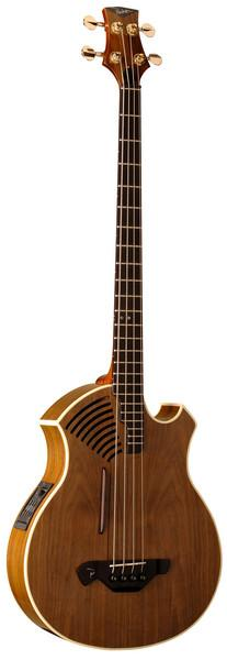 PAB40 acoustic/electric bass