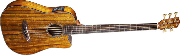 Victor Bailey 5-String Acoustic Bass from Fender
